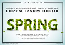 Vector spring lettering flyer made from fresh green leafs Stock Photo