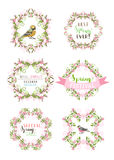 Vector spring ornate frames  on white background. Stock Photography