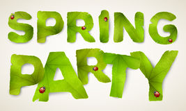 Vector Spring Party words, made from green leaves Stock Photo