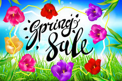 Vector spring sale background, Banner, colotful tulips flowers blue sky with lettering. Template for greeting post card. illustrat Stock Photography