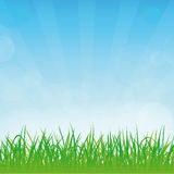 Vector spring or summer background Stock Photo