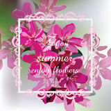 Vector Spring Summer card with pink flowers Royalty Free Stock Photography