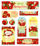 Vector spring time flowers greeting cards and tags. Spring time vector cards and tags set with flowers bouquets and greeting quotes. Floral springtime design of Stock Photos