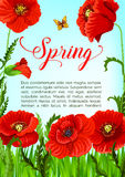 Vector spring time greeting card of poppy flowers Royalty Free Stock Images