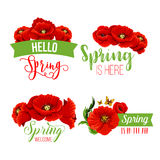 Vector spring time greeting quotes poppy flowers Royalty Free Stock Photos
