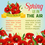 Vector spring time poppy flowers greeting poster Royalty Free Stock Photo