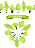 Vector spring tree brush. Green watercolor trees Royalty Free Stock Photo