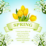 Vector spring tulip and lilly flowers bunch poster. Spring vector poster of yellow tulips bunch and springtime lily of valley wreath. Floral design of blooming royalty free illustration