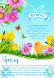 Vector spring wishes and flowers for greeting card Royalty Free Stock Photography