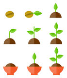 Vector sprouts isolated on white. Sequence of seed germination on soil, evolution concept vector illustration