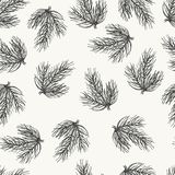 Spurce seamless pattern, hand drawn sketch. Vector spruce, fir seamless pattern, hand drawing sketch illustration. Botanical illustration in retro rustic style Stock Photos