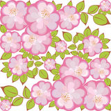 Vector Square flower pattern. Pattern of pink-purple flowers enclosed in a square Stock Photography