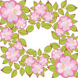 Vector Square flower pattern. Pattern of pink-purple flowers enclosed in a square Royalty Free Stock Images