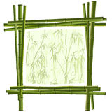 Vector square frame from green bamboo. Royalty Free Stock Photos