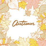 Vector square frame with hand drawn autumn leaves. Yellow fall background. Stock Photography