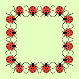 Vector square frame from ladybugs on green background Stock Photo