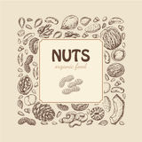 Vector square frame of nuts and seeds Stock Image