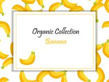 Vector square label, banana jam, sauce or juice Royalty Free Stock Images