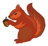 Vector Squirrel Royalty Free Stock Photos