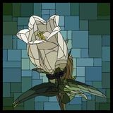 Vector stained glass window with blooming bellflower. royalty free illustration