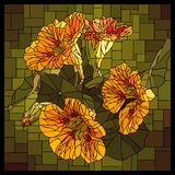 Vector stained glass window with blooming nasturtium with buds. stock illustration
