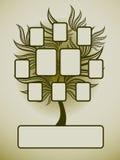 Vector stamboomontwerp met frames royalty-vrije illustratie