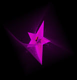 Vector star. On a black background. A fractal Stock Image