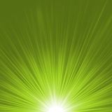 Vector starburst rays. EPS 8 Royalty Free Stock Image