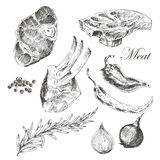 Vector steak meat hand drawing with pepper and Royalty Free Stock Images