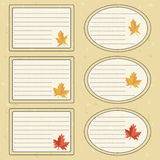 Vector sticker for notebook. Maple leaf Stock Photography