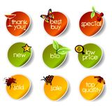 Vector stickers. Colored  stickers on white background Royalty Free Stock Photography