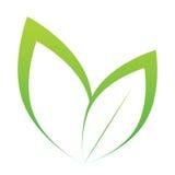 Vector stilisiertes Schattenbild des Frühlingsbaumblattes, das auf Weiß lokalisiert wird Stockfotos