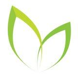 Vector stilisiertes Schattenbild des Frühlingsbaumblattes, das auf Weiß lokalisiert wird Lizenzfreie Stockfotografie