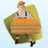 Vector stock illustration. Harvesting. A man collects oranges Stock Image