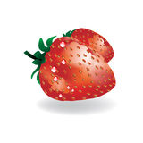 Vector strawberries Stock Photos