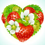 Vector strawberries in the shape of heart. Vector red strawberry, green leaf and white flower in the shape of heart Stock Image
