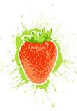 Vector Strawberry Stock Image