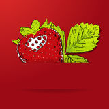 Vector strawberry background. Stock Photography