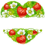 Vector strawberry frame in the shape of heart Stock Photography