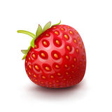 Vector Strawberry Isolated Royalty Free Stock Photos