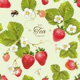 Vector strawberry tea seamless pattern. Stock Photography