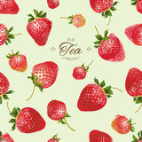 Vector strawberry tea seamless pattern. Royalty Free Stock Photography