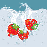 Vector of strawberry in water Stock Photos
