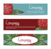 Vector stylish floral banners with clover. Bright doodle cartoon cards in . Abstract header  background Stock Images