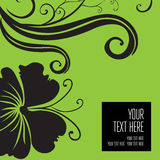 Vector stylish green floral background Royalty Free Stock Images
