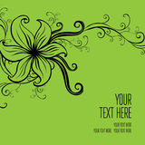Vector stylish green floral background Stock Images