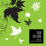 Vector stylish green floral background Stock Photo