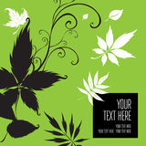 Vector stylish green floral background Royalty Free Stock Image