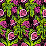 Vector stylish hand drawn seamless pattern with figs and leaves. Stock Photos