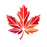 Vector stylize logo with red maple leaf Royalty Free Stock Photography